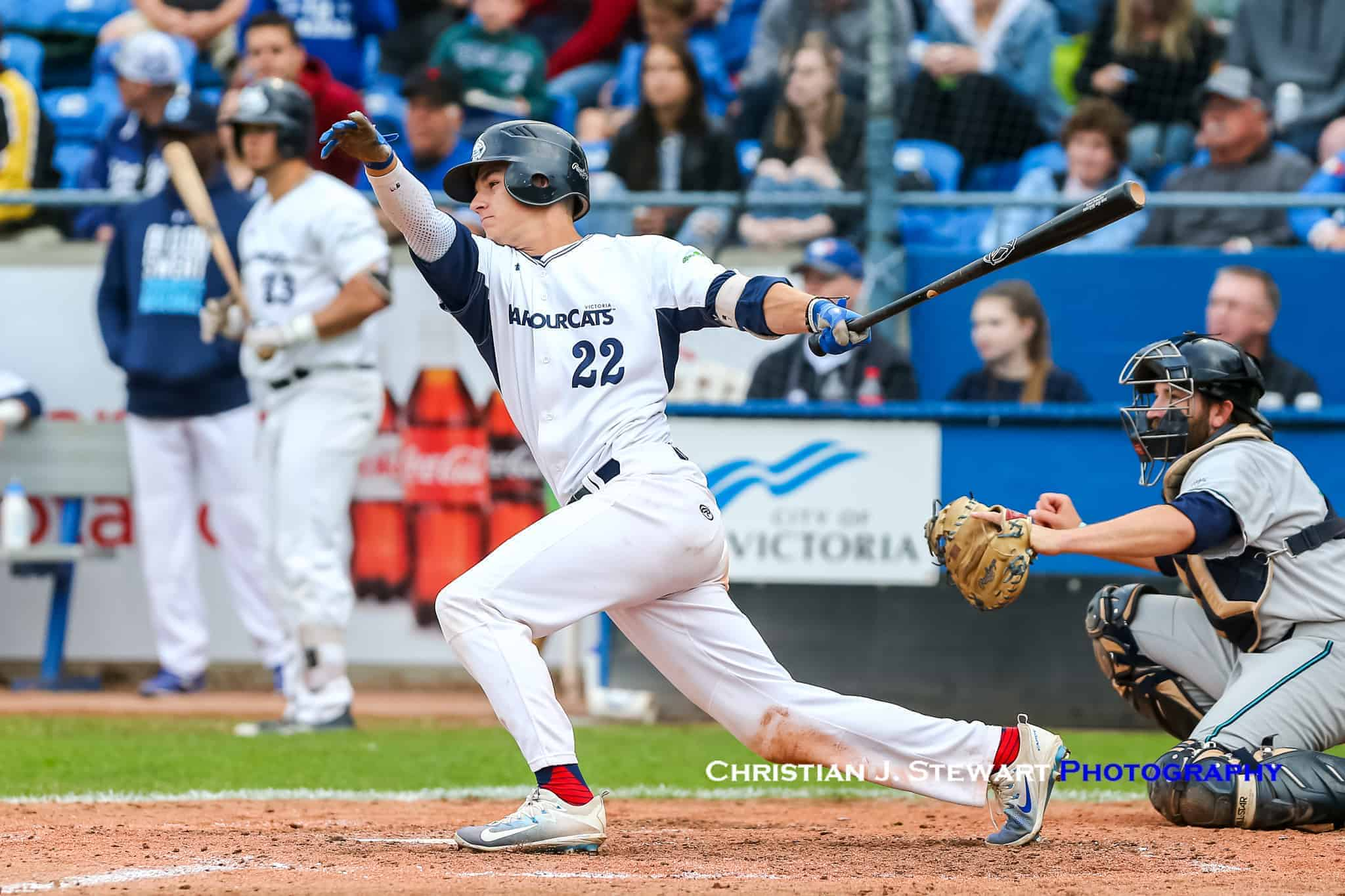 Victoria Harbourcats Local Infielder Jason Willow Returning To
